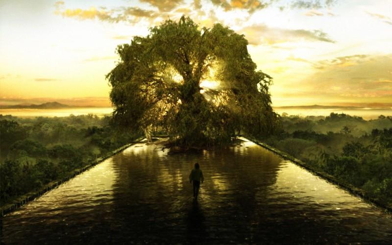 arbre_maxi_sciences