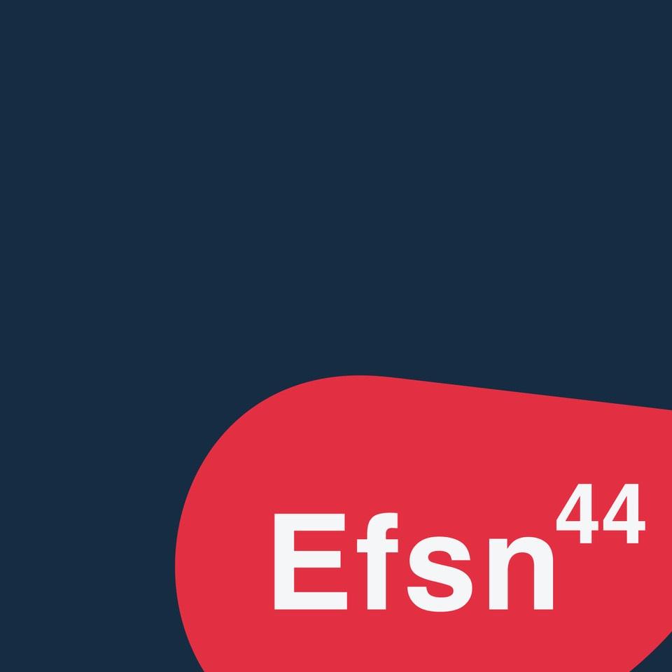 logo efsn